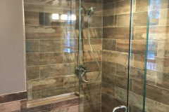 Shower Door #29