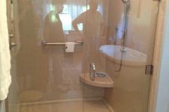Shower Door #13