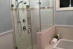 Shower Door #35