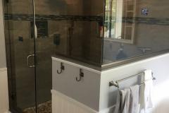 Shower Door #43